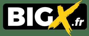 BIG X